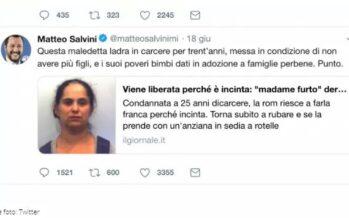 Razzismo.«Maledetta ladra», Salvini scatena il linciaggio social contro una donna rom