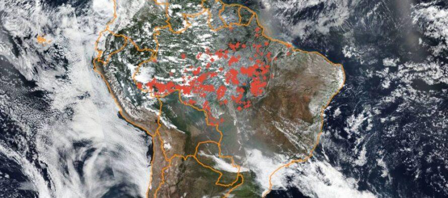 """El denominado """"Pacto de Leticia por la Amazonia"""": breves apuntes"""