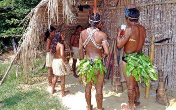 Per difendere l'Amazzonia un progetto multidisciplinare