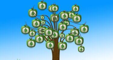 Il Piano della Finzione ecologica: pochi fondi a mobilità green e biodiversità
