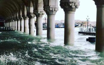 Venezia annega. La città di nuovo sott'acqua, la tregua è lontana