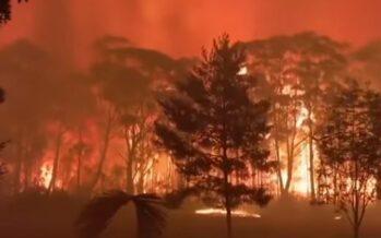 Australia. Clima, ieri altri 100 incendi, bruciati 5 milioni di ettari