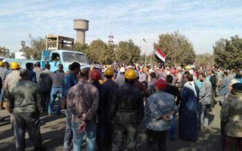 Egitto. Gli operai sono tornati, montano le proteste