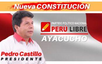 Perù controcorrente: al primo turno vince la sinistra del leader sindacale Pedro Castillo