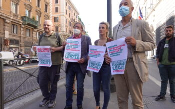 Referendum sulla cannabis: oltre 630mila firme, si parte