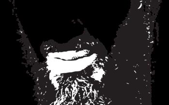 Al Qaeda, dalla jihad globale al radicamento locale